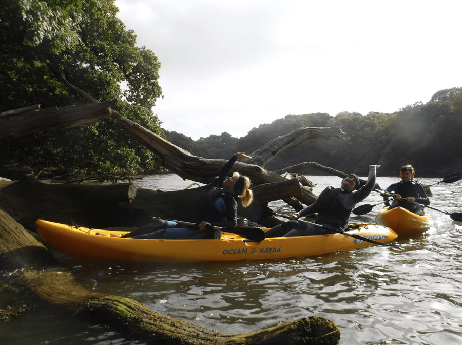 What is it about The Helford River that I love so much?